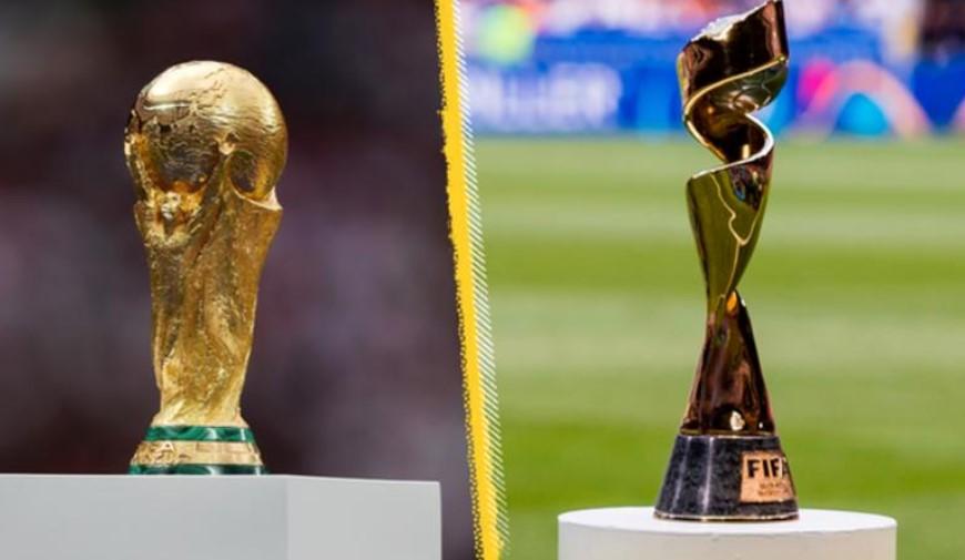国际足联考虑每两年举办一次男女世界杯