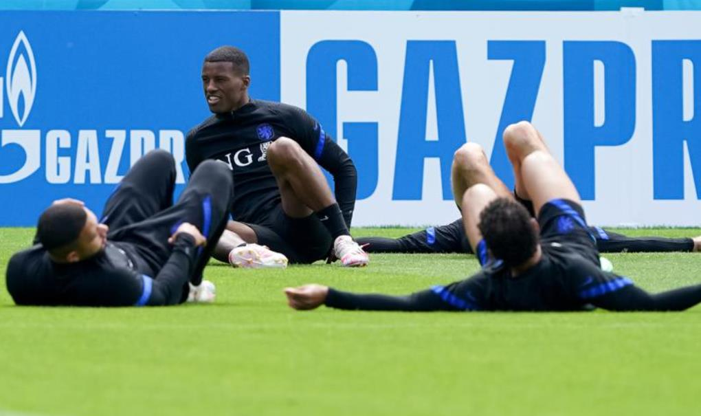 荷兰队的维纳尔杜姆希望欧足联对种族歧视采取强有力的行动