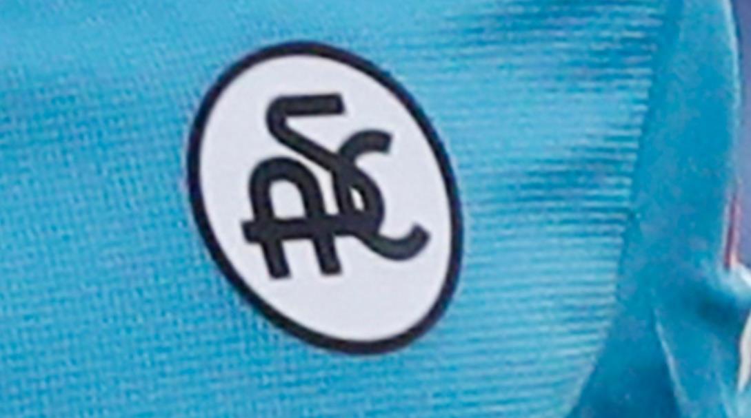 意甲俱乐部被国际足联禁赛两年